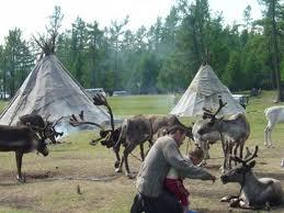 トナカイを飼うツアータン族