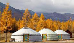 Tourist camp near Altai Mountains