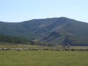 Kharkhiraa Mountain