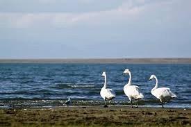Terkh Lake